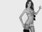 Alessandra Ambrosio - Wallpapers - Picture 55 - 1024x768