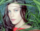Liv Tyler - Wallpapers - Picture 16 - 1024x768