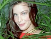 Liv Tyler - Wallpapers - Picture 22 - 1024x768