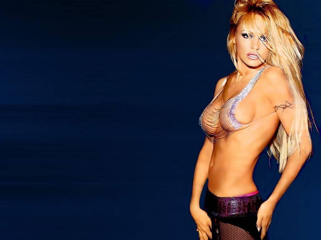 Pamela anderson секс 1 фотография