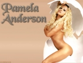 Pamela Anderson - Wallpapers - Picture 156 - 1024x768