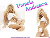 Pamela Anderson - Wallpapers - Picture 22 - 800x600