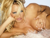 Pamela Anderson - Wallpapers - Picture 63 - 1024x768