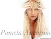 Pamela Anderson - Wallpapers - Picture 149 - 1024x768