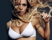 Pamela Anderson - Wallpapers - Picture 126 - 1024x768