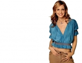 Sarah Michelle Gellar - Wallpapers - Picture 75 - 1024x768