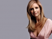 Sarah Michelle Gellar - Wallpapers - Picture 26 - 1024x768