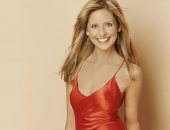 Sarah Michelle Gellar - Wallpapers - Picture 205 - 1024x768
