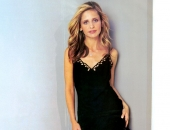 Sarah Michelle Gellar - Wallpapers - Picture 174 - 1024x768