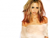 Sarah Michelle Gellar - Wallpapers - Picture 117 - 1024x768