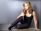 Sarah Michelle Gellar - Wallpapers - Picture 133 - 1024x768