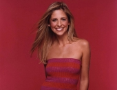 Sarah Michelle Gellar - Wallpapers - Picture 140 - 1024x768