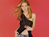 Sarah Michelle Gellar - Wallpapers - Picture 179 - 1024x768